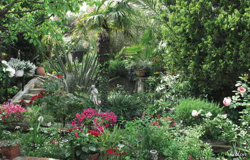 sanary environnement de magnifiques jardins et balcons fleuris. Black Bedroom Furniture Sets. Home Design Ideas