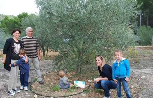 sanary petite enfance les enfants des cr ches parrainent des oliviers. Black Bedroom Furniture Sets. Home Design Ideas