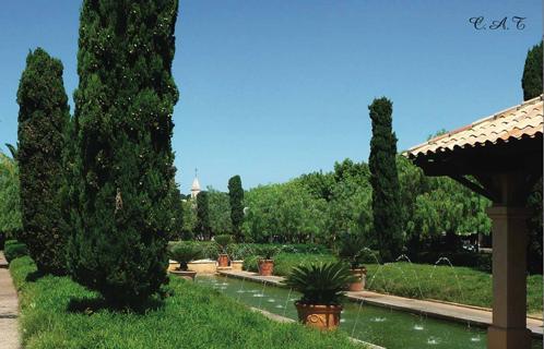 Sanary environnement de magnifiques jardins et balcons for Entretien jardin bidart